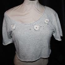 Forever 21 Rory Beca Womens Gray  Crop Top Size Medium Photo