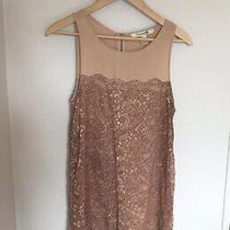 Forever21 Blush Lace Dress Size Xs Photo