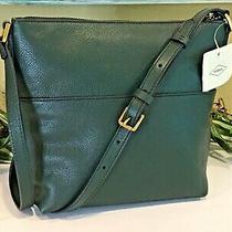 Fossil Amelia Crossbody Shoulder Bag Messenger Spruce Green Leather New 168 Photo