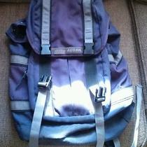 Fossil Backpack Photo