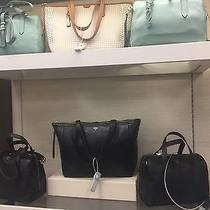 Fossil Bags Photo