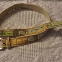Fossil Belt Fits 32 to 36 Inches Photo