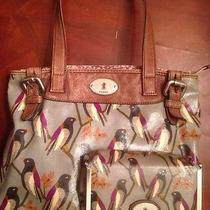 Fossil Bird Purse and Wallet Photo