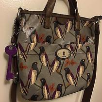 Fossil Birds Vinyl Purse Shoulder Bag Leather Trim With Matching Wallet Euc Photo