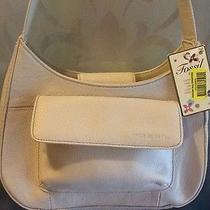 Fossil Bone White  Women's Genuine Leather Purse W Zippered Organizer Nwt Photo