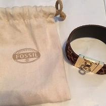 Fossil Bracelet Photo