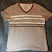 Fossil Brand Men's Brown Striped T-Shirt M Medium B-Neck Photo