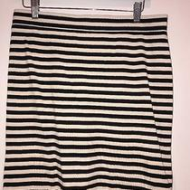 Fossil Brand Skirt Nwt Black and Ivory Stripe Medium Orig. 78 Photo