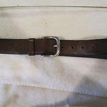 Fossil Brown Leather Belt 38 Photo
