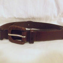 Fossil  Brown Leather Belt  L Photo