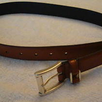 Fossil Brown Leather Belt-Small Photo