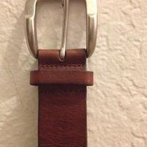 Fossil Brown Leather Belt Small Photo