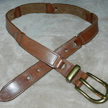 Fossil Brown Leather Linked Sections Belt W/ Brass Buckle - M (27-32