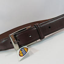 Fossil Brown Texture Leather Belt Silver Buckle Size 36 294 Photo