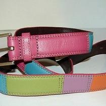 Fossil Colorblock Bright Multi Colored Patchwork Leather Belt Nwt Size Xl Photo