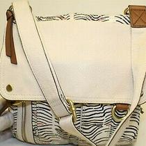 Fossil Compact Organizer Zip Pocketed All-in-One Shoulder Bag Purse 105450 Photo