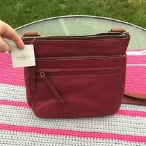 Fossil Corey Leather Crossbody in Wine - Nwts  Photo