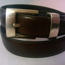 Fossil Dark Brown Women's Leather Belt  Size M Nice Photo