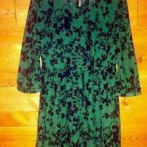 Fossil Dress (Medium) Photo