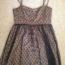 Fossil Dress Size Large Photo