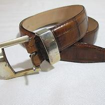Fossil Embossed Cowhide Leather Belt   Woman's Size 31  Medium Photo