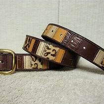 Fossil Exotic Patch Work Women's Brown and Multi Colored Leather Belt Size S Photo