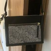 Fossil Fiona E/w Crossbody Bag Handbag Black/animal Print Nwt Small Lovely Photo