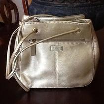 Fossil Gold  Handbag Photo