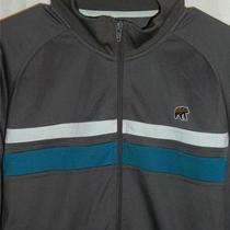 Fossil Gray Striped Full Zip Track Jacket W/ Bear Logo Sz M Polyester Photo