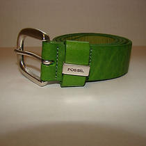Fossil Green Leather Belt - Nwot Sz M (28-32