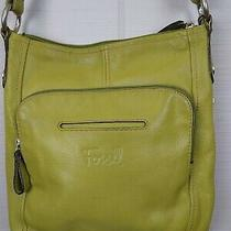 Fossil Green Pebbled Leather Crossbody Purse Organizer Shoulder Bag Photo