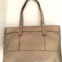 Fossil Hunter Shopper Metalic Photo