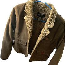 Fossil Jacket Photo