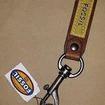 Fossil Keychains Photo