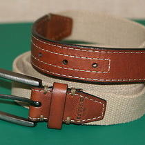Fossil Khaki Canvas/brown Genuine Leather Mens Casual Belt Size 40/100 New Photo