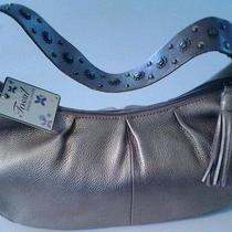 Fossil Leather Photo