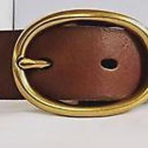 Fossil Leather Belt Large Photo