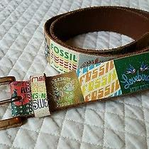 Fossil Leather Belt Retro Collage Photo