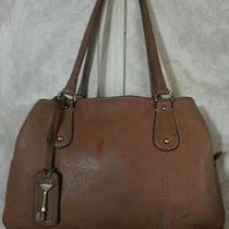 Fossil Leather Handbag Cute Photo