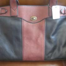 Fossil Leather Nwt Handbag Photo