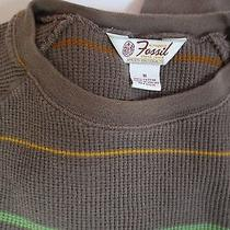 Fossil Men's Casual Brown Lightweight Cotton Knit Thin Stripe Shirt Size M Euc  Photo