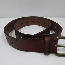 Fossil Men's Leather Belt Brown 30 New Photo