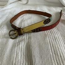 Fossil Multicolor Belt Size Small  Photo