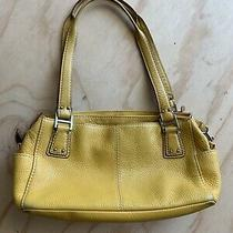 Fossil Mustard Yellow Genuine Leather Shoulder Bag Hand Purse Zip Photo