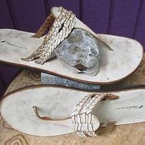 Fossil New Braided Leather Thongs Sandals Sz 11 Flip Flops Shoes Slides Photo