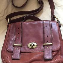 Fossil Pocketbook Photo