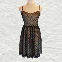 Fossil Polka Dot Party Dress Photo