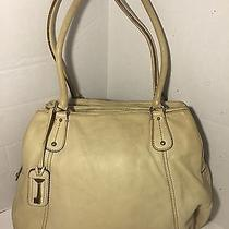 Fossil Purse Beige Leather Photo