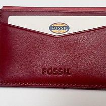 Fossil Red Elison Card Case Brick Red Photo