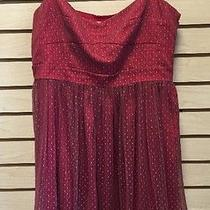 Fossil Red Net Dress Medium Photo